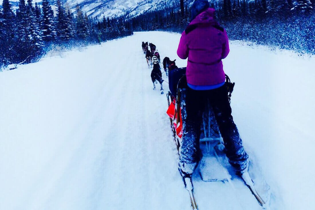 How Shaynee Traska Side Hustled Her Way to Her Dogsledding Dream