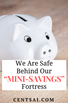 """We Are Safe Behind Our """"Mini-Savings"""" Fortress"""