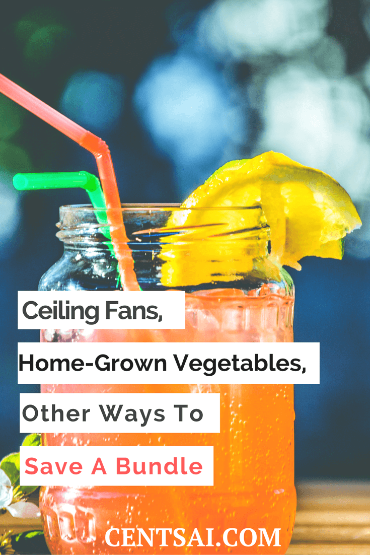 Ceiling Fans, Home-Grown Vegetables, Other Ways to Save a Bundle. In a very short period, we agreed on several simple ways to save more every month. Here is a short list of five such ways: