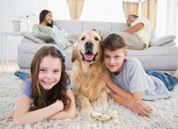 What's the Cost of a Dog? How to Prepare for Pet Parenting