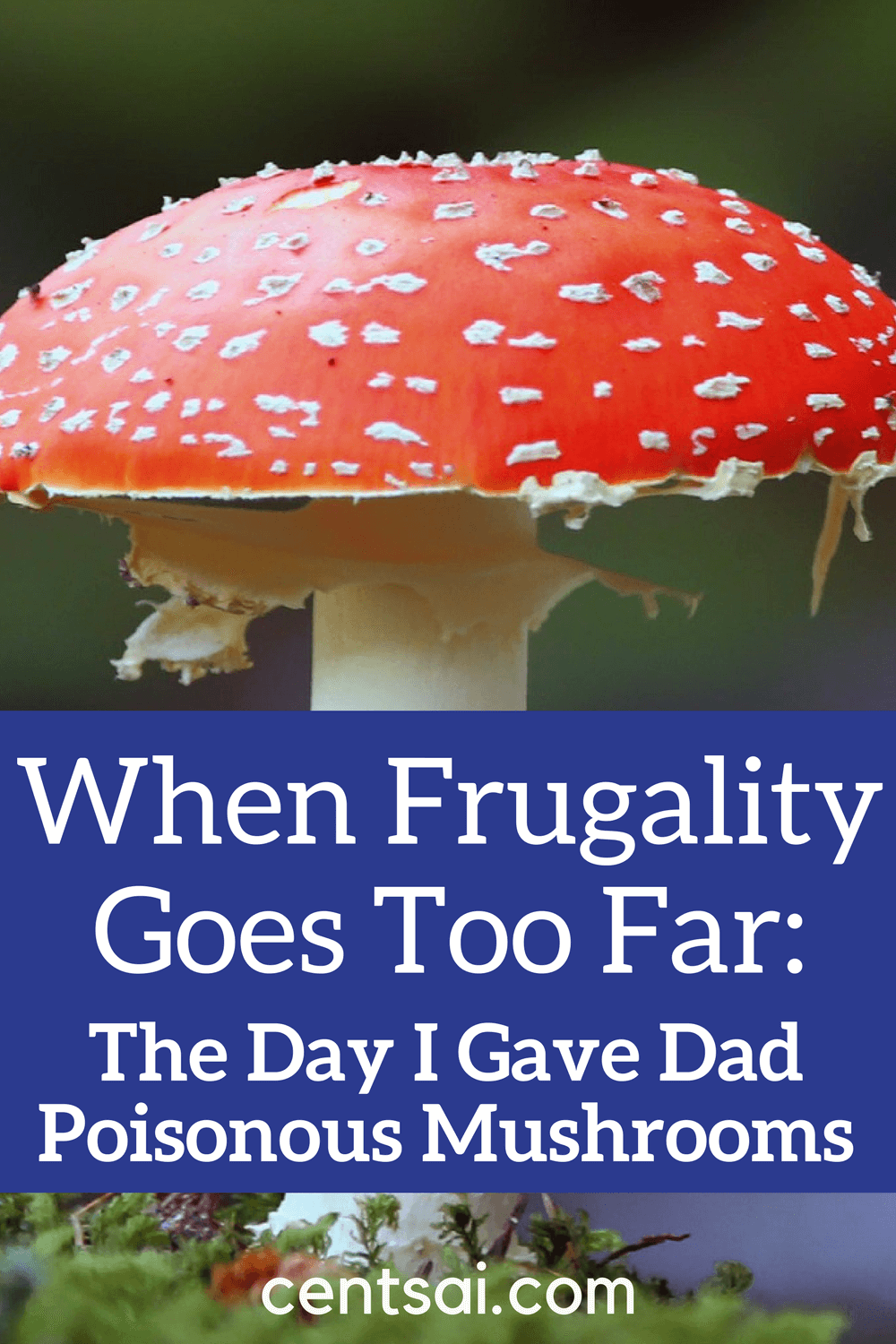 When Frugality Goes Too Far: The Day I Gave Dad Poisonous Mushrooms. It's good to be careful with money. But when frugality goes too far, you may end up almost killing your parents trying to save money!