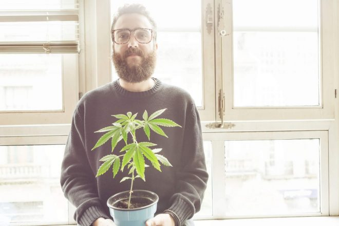 How One Man Grew a Profitable Marijuana Business From Scratch