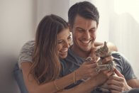Vet Costs for Cats: Are You Prepared for $3,500 in Vet Bills? - emergency vet bill