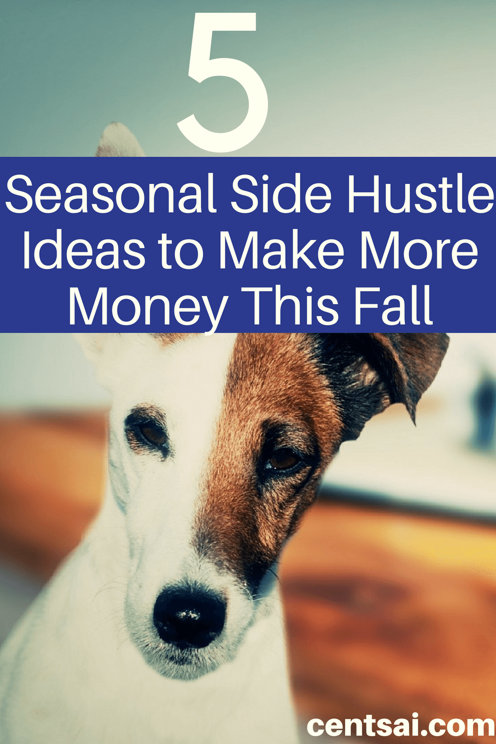 Whether you need money for college or gifts, a good side hustle can beef up your savings. Why not try one of these fall side hustle ideas?