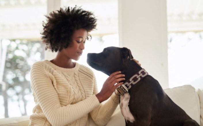 Pet Emergency Fund: How to Prepare for the Worst