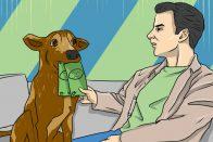 Affordable Pet Care | Art by Jonan Everett