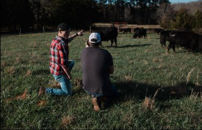 Jonathan Willis talks to farmer | how to start a food business