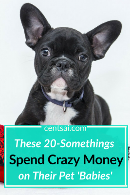 These 20-Somethings Spend Crazy Money on Their Pet 'Babies'. Millennials are spending serious money on their fur babies, is it? Find out why... #crazymoneysavingtips #crazymoneysaving #spendcrazymoney #furbaby