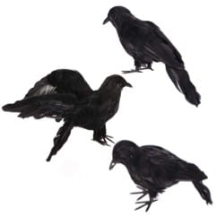 27 Cheap Halloween Party Ideas for Under $27: Raven props