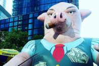 What is a fiduciary? | Fiduciary definition | Inflatable pig | Photo by Daye Deura