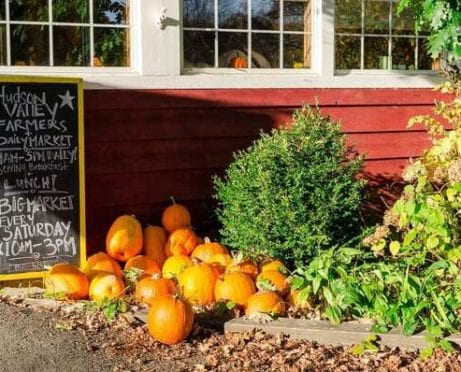 How to Reduce Food Waste and Help the Hungry